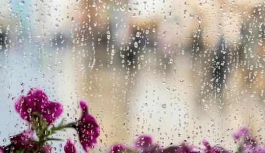 梅雨時期でも臭わない部屋干し5つのポイント&おすすめ洗剤・柔軟剤6選!