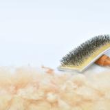 ペットの毛がついた服は洗濯機に入れて良い?洗濯ボールやスポンジなど便利グッズ6選!