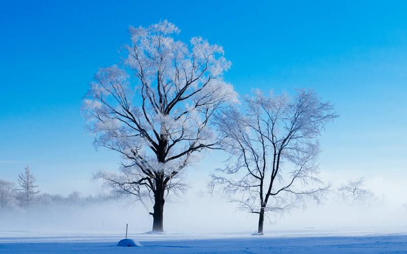 例年より寒い冬は 洗濯機も凍結してしまう?