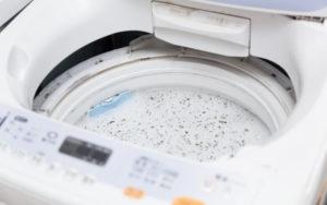 洗濯機のくず取りネットの取り替え頻度は?100円で交換できちゃう!