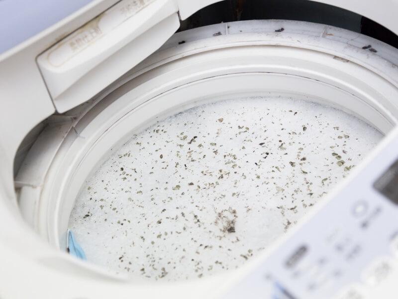 C_188_2,梅雨 洗濯機