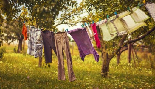【乾かない・虫がつく!】秋の季節のお洋服のお洗濯に気をつけておくべき注意点と回避法