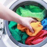 ダニは洗濯で死なない?しっかり除去する方法とおすすめ洗濯機をご紹介!