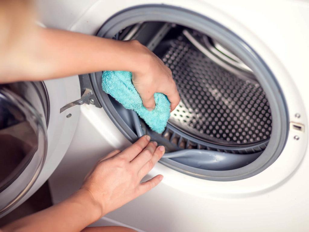 洗濯槽 掃除
