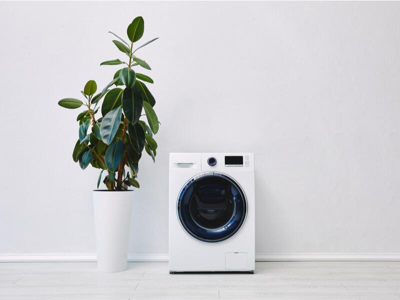 白い洗濯機 観葉植物
