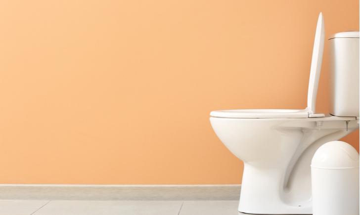 掃除グッズを活用してトイレをピカピカにしよう