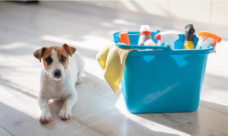 玄関掃除は汚れや素材に合った洗剤を使おう