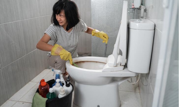 トイレブラシは雑菌が繁殖しやすい