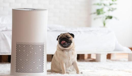 空気清浄機を掃除する方法・手順・頻度|おすすめアイテム10選・自動掃除機能付き空気清浄機5選も紹介