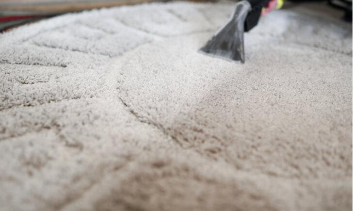 定期的に掃除して清潔な絨毯・カーペットで過ごそう!